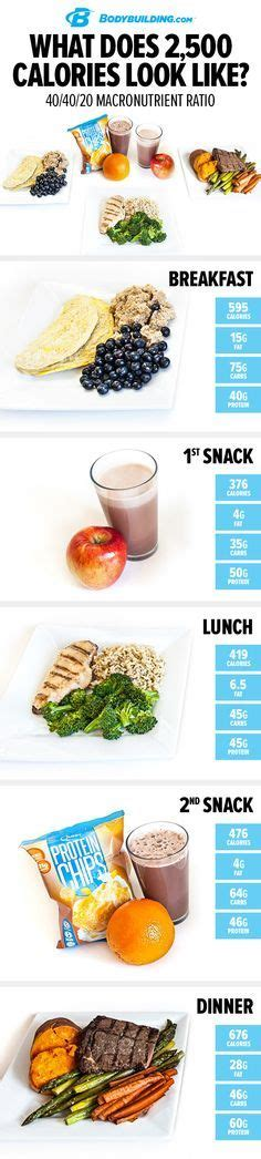 What Does 2,500 Calories Look Like? 40/40/20