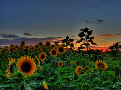 100 Stunning HDR Images   Bluefaqs
